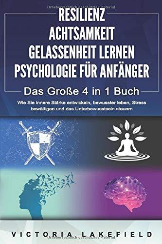 RESILIENZ   ACHTSAMKEIT   GELASSENHEIT LERNEN   PSYCHOLOGIE FÜR ANFÄNGER - Das...