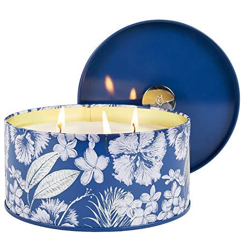 La Jolíe Muse Meeresbrise & Salbei Duftkerze, natürliche Kerze für zu Hause &...