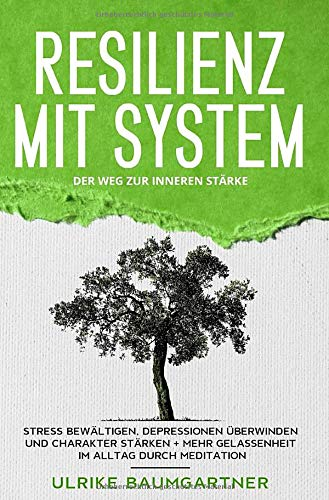 Resilienz mit System: Der Weg zur inneren Stärke: Stress bewältigen, Depressionen...